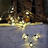 Lichterkette,FeiliandaJJ String Lights 220V 1/2M 10/20pc Kreativ Mini Laterne Weihnachtsbaum Hängende Verzierung LED Licht Innen/Außen Hochzeit Party Halloween Christmas Haus Deko (Schwarz, 2M(20pcs))
