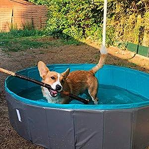 Navaris Piscina per Cani Rigida Taglia XL - Piscinetta in PVC Pieghevole - Bagno Animali Domestici Esterno - Antiscivolo AntiGraffio - 170x150x30cm