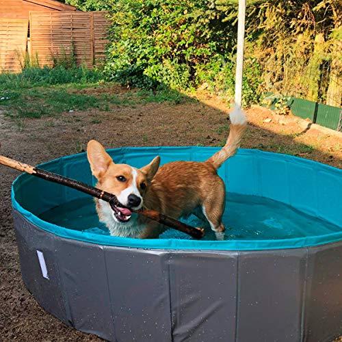 Navaris Piscina para Perros de PVC - Piscina Plegable para Mascotas con Lona Protectora - Bañera Grande y Desmontable de plástico - 130 x 110