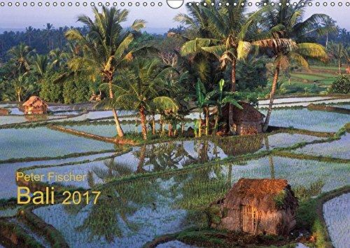 Peter Fischer - Bali 2017 (Wandkalender 2017 DIN A3 quer): Unglaubliche Farben und Vielfalt einer exotischen Insel. (Monatskalender, 14 Seiten ) (CALVENDO Orte)