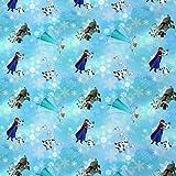 Jersey Disney Frozen Elsa Anna Olaf Eiskristalle hellblau