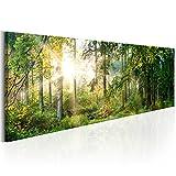 decomonkey   Akustikbild Wald 120x40 cm   Leinwand   1 Teilig   Wandbilder XXL   Schallschlucker   Schallschutz   Akustikdämmung   Wand Bild   Leise   Natur Landschaft