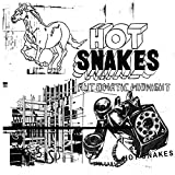 Songtexte von Hot Snakes - Automatic Midnight