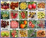 Tomaten Set 1: Tomatensamen 20 Arten je 10 Samen alte Sorten Saatgut Fleischtomate Cherrytomate Cockteiltomate Rispentom