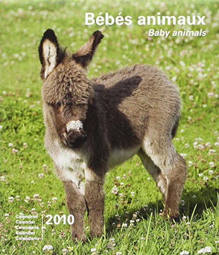 2010 Baby Animals Small Calendar