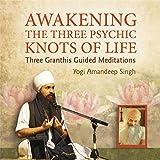 Awakening:3 Psychic Knots of l