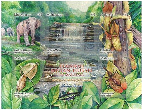 Meraviglie francobolli malese miniatura Foresta foglio - Borneo Pogmy Elephant - Dead leaf Mantis - Maliau Cascata - Nepenthes veitchii - Violino Beetle - Malaysia / 2013 / MNH