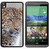 Print Motif Coque de protection Case Cover // F00031072 Primer plano de leopardo // HTC Desire 816