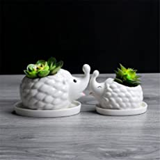 Baradu 1 Pc Cute Animal Figure Shape Ceramic Succulent Planter Pot, Decorative Cactus Plants Flower White Pot, Large Size