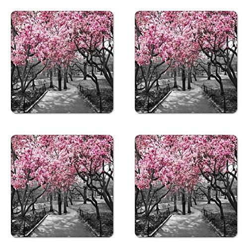 Home-cherry-kollektion (lunarable NYC Untersetzer Set von vier, Blüten in Central Park Landschaft mit Cherry Trees Forest in Spring Season Bild, quadratisch aus Hartfaserplatte glänzend Untersetzer für Getränke, magenta grau)