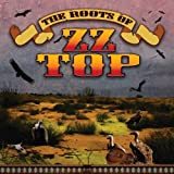 Roots of Zz Top