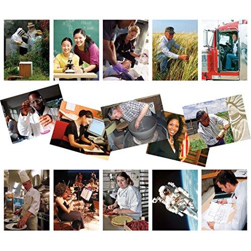 North Star Teacher Resource NST9083 Professions Carri-res Cartes de langues