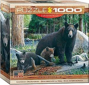 Eurographics Puzzle 1000 Pc - New Discoveries (8x8 box) (MO) - (EG80000793)
