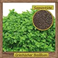 Samenliebe Griechischer Basilikum-Samen > 100 Samen hochwertige Kräuter-Samen - aus natürlichem Anbau - Herkunftsland: Italien von Samenliebe auf Du und dein Garten