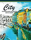 City Coloring Books for Adults: A Sketch grayscale coloring books beginner (High Quality picture): Volume 2