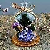HOOM-Fleur-ternelle--la-main-crative-Saint-valentin-anniversaire-cadeauours-violet