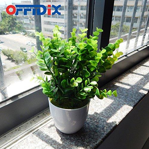 Offidix mini pl stico eucalipto plantas artificiales hojas con jarr n para escritorio balc n de - Plantas artificiales exterior ...