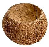 NaDeco Kokos Becher   Kokosnuss Schale   Kokosbecher   Echte Deko Kokosnuss   Kokosnussschalen   Deko Kokosnuss   Beach Party   Beach Club Deko