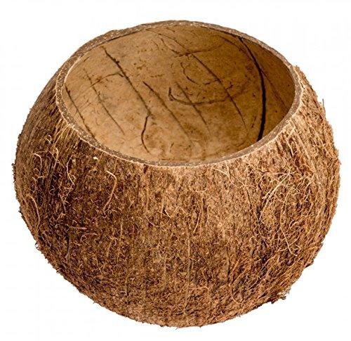 Kokos Becher, Kokosnuss Schale