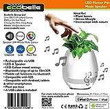 ECOBELLE LED Blumentopf Musik Bluetooth Lautsprecher + Klavierspiel mit Magic Touch. Bunt, kann als Nachtlicht, Bett-Licht, Büro-Licht und Hauptdekoration benutzt werden. USB wiederauflad