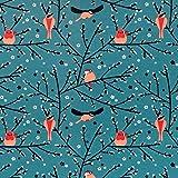 MIRABLAU DESIGN Stoffverkauf Bio Baumwolle Jersey GOTS Vögel rot orange auf Petrol grün (42-004) 0,5m