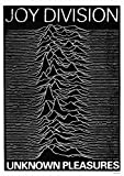 Joy Division: Unknown Pleasures (1979) | UK Import Poster [59 x 84 cm]