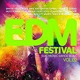 EDM Festival - Electronic Dance Music, Vol. 2