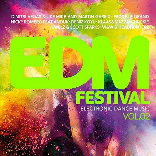 edm-festival-electronic-dance-music-vol-2