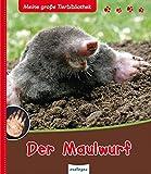 Der Maulwurf - Meine große Tierbibliothek