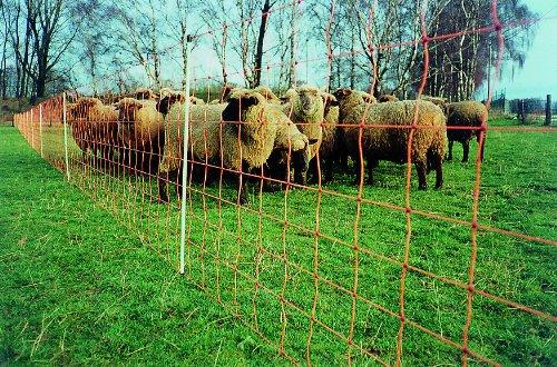 Göbel Clôture électrique d'alimentation Euro Extra 50 m de long 90 cm de haut 14 piquets simple pointe avec broutage des animaux sauvages
