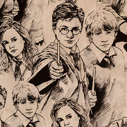 Unbekannt Camelot Harry Potter Skizze Basteln Baumwolle Stoff - Harry, Ron & Hermione - Bambi & Klopfer Diamanten - Marina, 1 metre (Harry-potter-stoff)