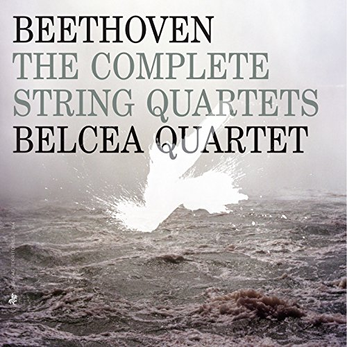 String Quartet No. 6 in B-Flat Major, Op. 18 No. 6: II. Adagio, ma non troppo