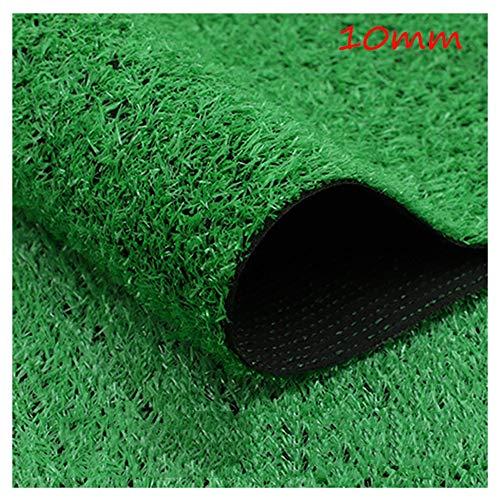 Artificial Lawn XIAODONG Grashöhe 10mm Kunstrasen Kunststoff Wanddekoration Einfache Reinigung Gras Dekoration Im Freien 2m Breite (Size : 2 * 15m)