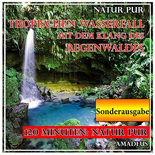 Tropischen Wasserfall mit dem Klang des Regenwaldes: Natur pur: Sonderausgabe (Klang-wasserfall)
