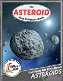 The Asteroid Fact and Picture Book: Fun Facts for Kids About Asteroids (Turn and Learn)