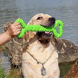 Chien Jouets à mâcher Résistant en Caoutchouc 13 Inch Os jouet en forme de chien chiots avec Convex Design jouet chien interactif solide pour les Chewers Agressifs petits et grands chiens nettoyage des dents