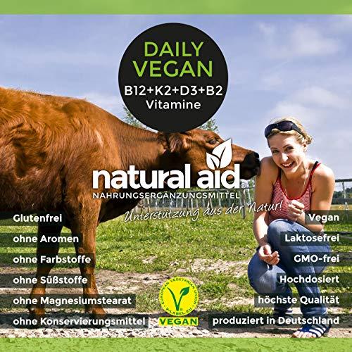 Daily Vegan – Vitamin B12+K2+D3+B2 Komplex – Kapseln Hochdosiert, 120 Kapseln (4 Monats-Vorrat), speziell für eine vegane/vegetarische Ernährung, glutenfrei, laktosefrei,