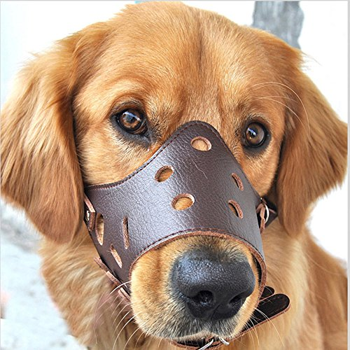 Easylifer Verstellbare Hundemaulkorb aus Leder atmungsaktiv Sicherheit Haustier Hund Maulkorb Maske f¨¹r Bissig und (Von Maske Baskerville Hund Der)