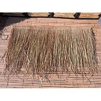 dachpappe schindeln preis palmendach reetdach schindel palme bambus palmenblatter palmenschirm 61jl4meeggl sl500 ac ss350
