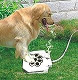 Brass Valve Outdoor Dog/Pet Water Fountain, Step On Dog/Pet Water Dispenser System