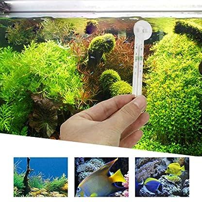 Gaddrt Easy Read Aquarium Thermometer/ Fish Tank Terrarium Aquarium Floating Glass Thermometer with Suction Cup 2