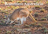 Beuteltiere Australiens (Wandkalender 2019 DIN A2 quer): Ausdrucksvolle Bilder einiger Beuteltierarten Australiens, in freier Wildbahn fotografiert (Monatskalender, 14 Seiten ) (CALVENDO Tiere)