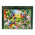 Falcon de Luxe - Birds for All Seasons Jigsaw Puzzle (1000…