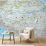 Weaeo 3D-Raum Wallpaper Benutzerdefinierte Fototapeten Vliest Wandaufkleber Kinderzimmer Blau Amazon Karte Weltkarte Wandbilder Tapete Für Die Wände 3D-120X100Cm