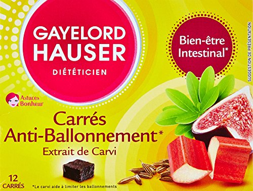 Book's Cover of Gayelord Hauser Boisson Carre Anti Ballonnement 120 g
