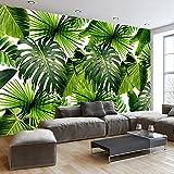 HUANGYAHUI Tropischer Regenwald Pflanzen, Bananenblätter, Große Wandbilder, Modernen, Minimalistischen, 3D Wallpaper, Schlafzimmer, Wohnzimmer, Tv Hintergrundbild-350 Cmx 245 Cm