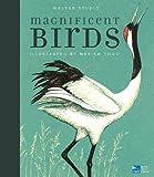 Magnificent Birds (Walker Studio imprint)