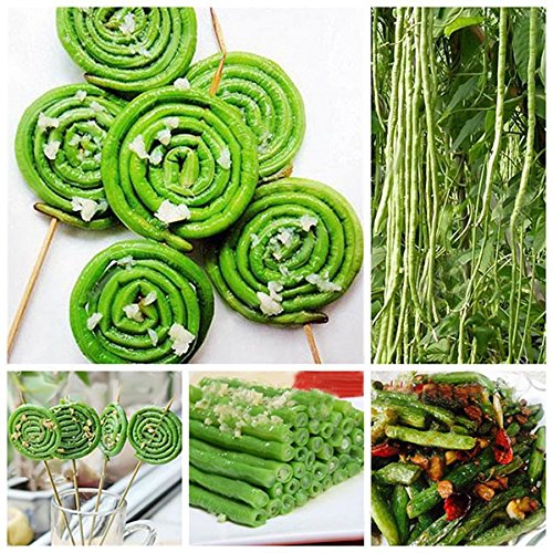 Inovey 20Pcs/Pack Vigna Sinensis Seeds Garden Farm Planting Vegetable Green Long Beans Seed