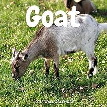 Goat 2018 Wall Calendar: Goat Photography, 8.5 x 8.5, Mini Calendar, Wall Calendar (New Years Gift Idea) (Animal Calendars)