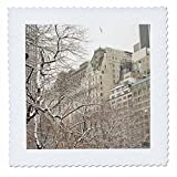 3dRose qs_10304_3 Steppdecke, Motiv Schnee Blizzard im